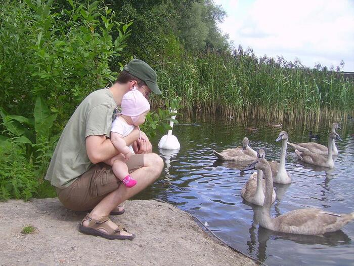 My daughter, me and swans