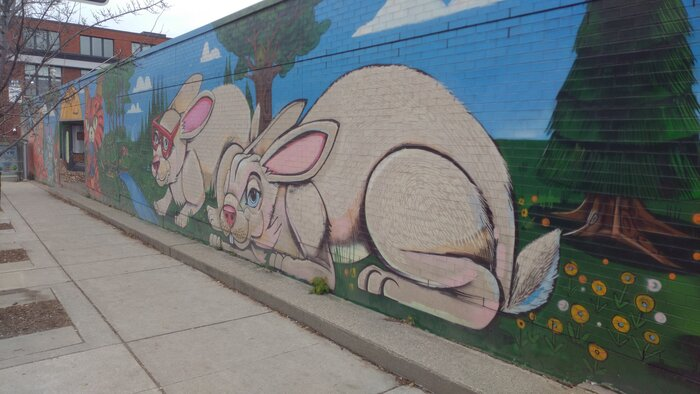 Rabbits graffiti